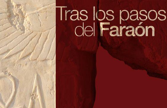 La Fundación Cajasol inaugura el año en la Sala Murillo con una exposición dedicada al templo de Millones de Años del faraón Tutmosis III.