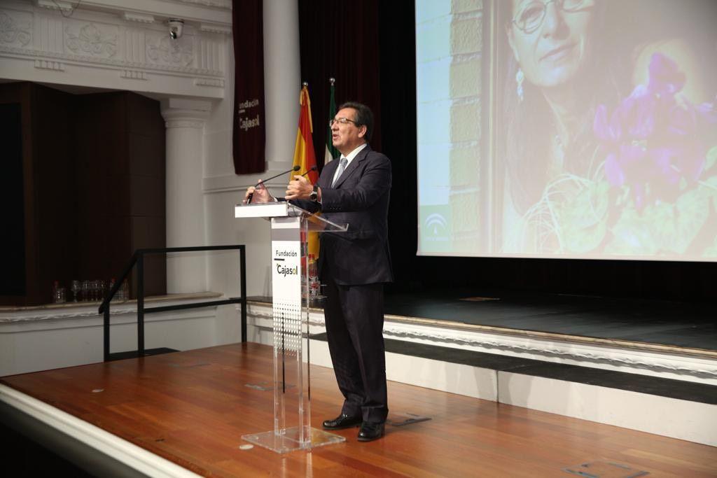 Antonio Pulido Gutiérrez, Presidente de la Fundación Cajasol